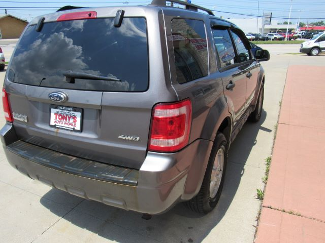 2009 Ford Escape XLT 4WD V6 in Cleveland