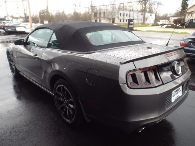 2014 Ford Mustang GT Convertible for sale at Carena Motors